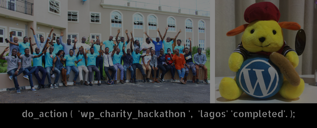 do_action ( 'wp_charity_hackathon completed group picture