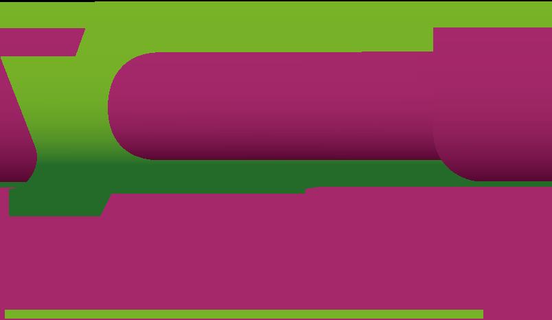 Yoast Academy
